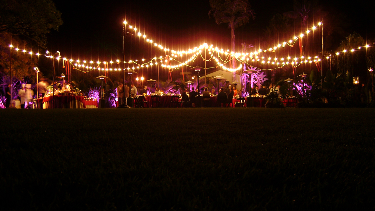 String Lights For Outdoor Tents : Canopies: Canopy Light